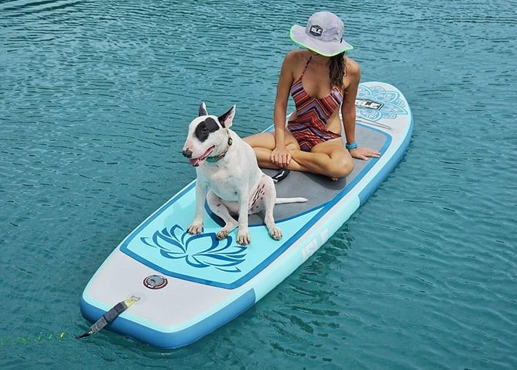 ISLE Lotus with Dog