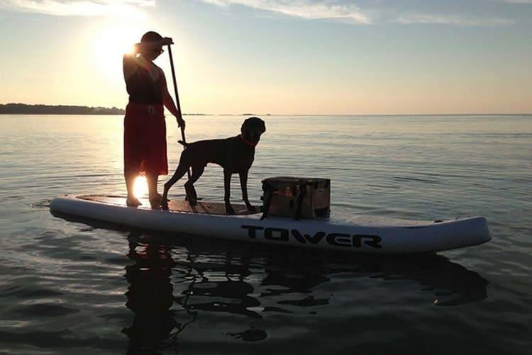 Tower 14' Xplorer Man and Dog